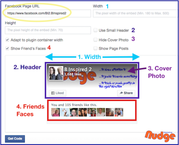 Facebook Page Plugin Customisations